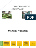 Taller - Corte y Procesamiento de Banano