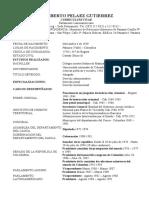 Curriculum Humberto Pelaez Gutiérrez