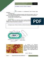 TEMA_3._Moneras_Protoctistas_Hongos.pdf