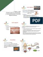 ciencias parasitologia.docx