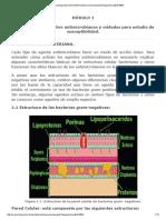 Módulo 1 Microbiología 1