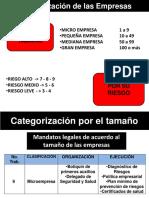 1. Categorización de las Empresas.pdf