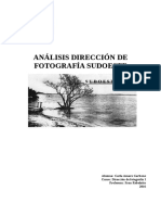 Sudoeste-analisis