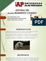 HISTORIA DEL ADIESTRAMIENTO CANINO.pptx