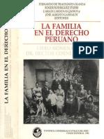 familia_derecho (1).pdf