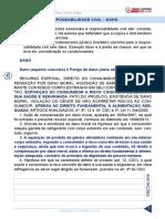 Resumo 1947690 Raquel Bueno 31183695 Direito Civil Juris 2015 Aula 116 Responsabilidade Civil Dano