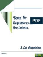 Tema 14b Reguladores Del Crecimiento. Citoquininas