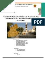 PLAN GESTIÓN DE RIESGO DEL DISTRITO DE LOS MOLINOS
