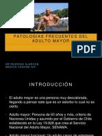 Patologias Basicas Del Adulto Mayor Copia
