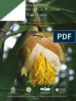 Flora Antioquia Vol II