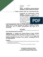 Aperson. Puente Camote- 3 Juzgado Penal