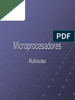 Multinucleo.pdf