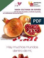 La Fruta Granada Cultivada en España