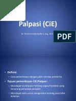 Palpasi (CiE)