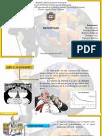 Diapositivas de la exposoción del monopolio.pptx