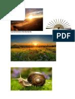 imprime el concepto de sol taller iv xd.docx