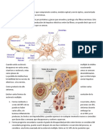 Esclerosis Multiple Resumen