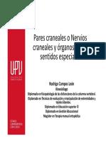 Pares craneales y órganos de los sentidos.pdf