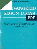 Fitzmyer Joseph a - El Evangelio Segun Lucas II - Capitulos 1-8,21 (Ediciones Cristiandad Madrid 1987)