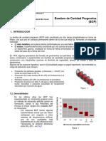 Guia2-BCP-agosto-2016.pdf