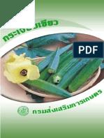 การปลูกกระเจี๊ยบเขียว.pdf