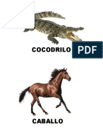 Animales Vetrebreadps e Invertebrados