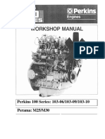 perkins100workshop.pdf
