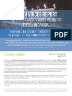 2017 Youth Voices Report