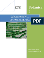 311140596-Informe-N-1-Cianobacterias (1).docx