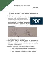 Metodele Klapp Și Cotrel Pentru Scolioză - Copy