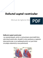 Defectul Septal Ventricular