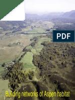 Building Aspen Habitat Networks