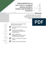 17417_Administra__o_Brasileira_Aula_04_Vol._nico