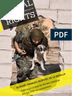 Global Rights Magazine - Kobane. PAISAJES DESPUÉS DE LA BATALLA