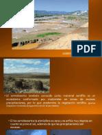 Semi Desierto