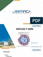 Décima Semana 1-Adn y Nucleo