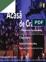 Afis Acasa de Craciun 70x100 Cm