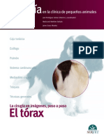 Torax CirugiaIV.issuu