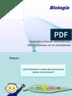 flujodeenerga-121113082413-phpapp01