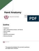 Hand Anatomy.pptx