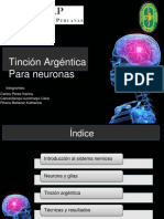 Tincion de Neuronas