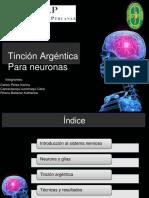 Tincion de Neuronas