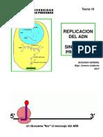 Bio Gen Teoria 10 2017 Replicacion- Sintesis