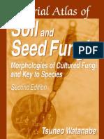 Soil Seed Fungi