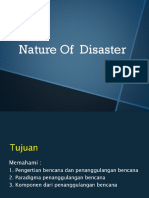 Nature of Disaster PP