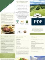 Lava Lake Joint Venture Brochure