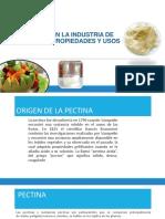 2. Extracción de Pectinas