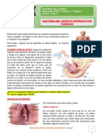 1. Anatomia Del Aparato Femenino.1G
