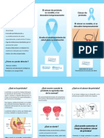 Triptico Cancer de Prostata