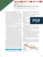 MUSCULOS HUESOS Y ARTICULACIONES DEL HOMBRO.pdf